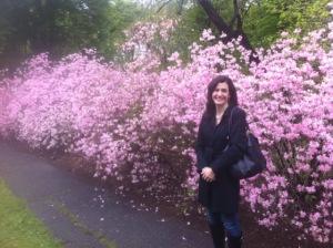 The azaleas were in full bloom!